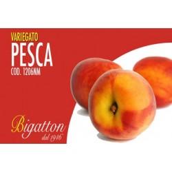 VARIEGATO PESCA