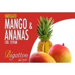 VARIEGATO MANGO ANANAS