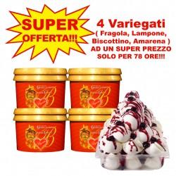 Offerta Variegati ( Fragola, Lampone, Biscottino, Amarena )