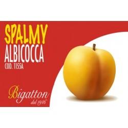 SPALMY ALBICOCCA