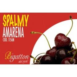 SPALMY AMARENA