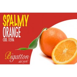 SPALMY ORANGE