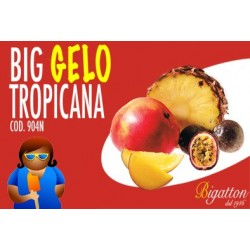 BIG GELO TROPICANA